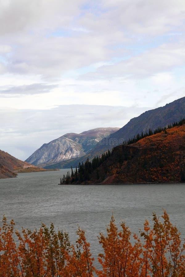 Alberta Kanada stockbilder