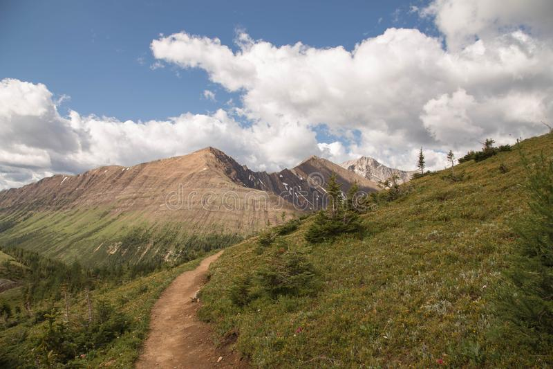 Alberta Mountain Landscape Beautiful Hikes arkivbild