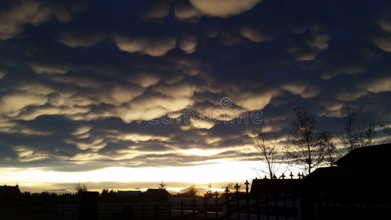 Alberta Sunset lizenzfreie stockbilder