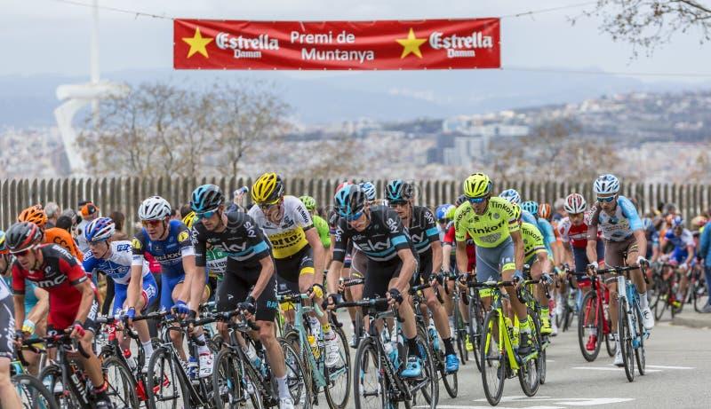 Alberto Contador - Volta Ciclista um Catalunya 2016 imagem de stock royalty free