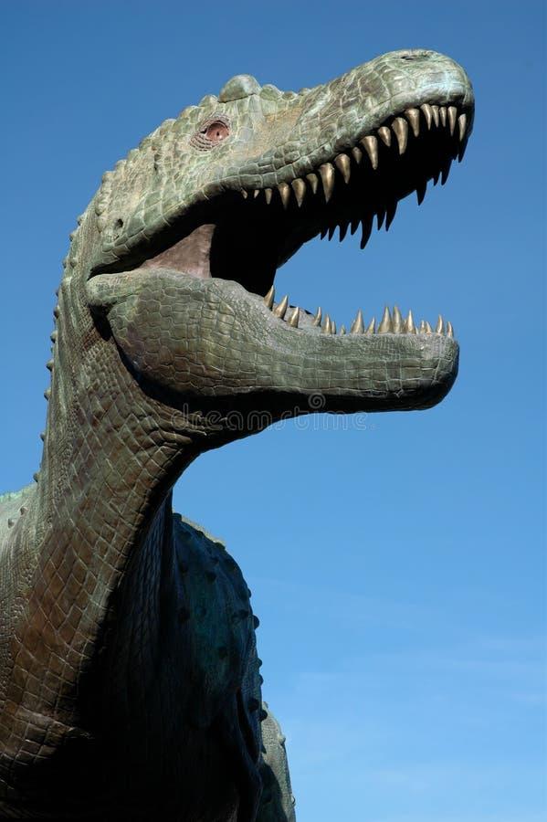 Download Albertosaurus stock photo. Image of predator, albertosaurus - 4299732