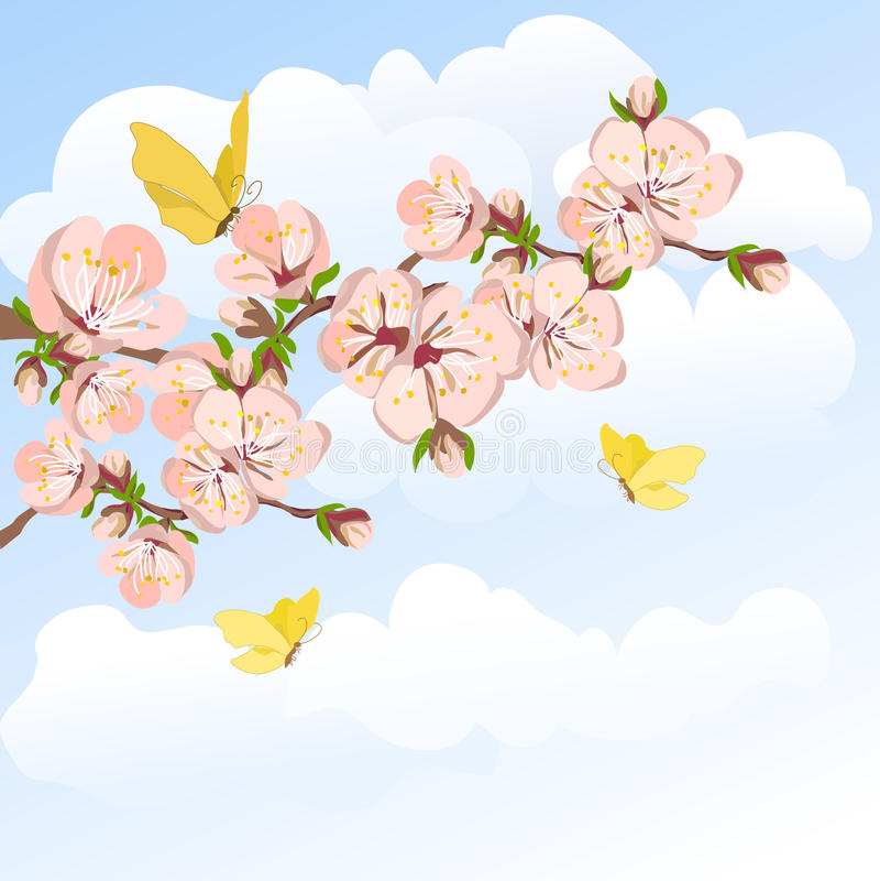 Albicocca e cielo di fioritura royalty illustrazione gratis