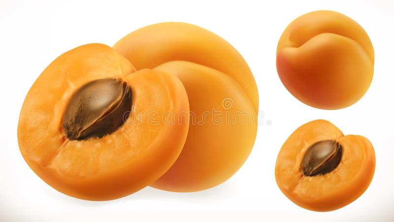 albicocca Icona di vettore della frutta fresca 3d illustrazione di stock