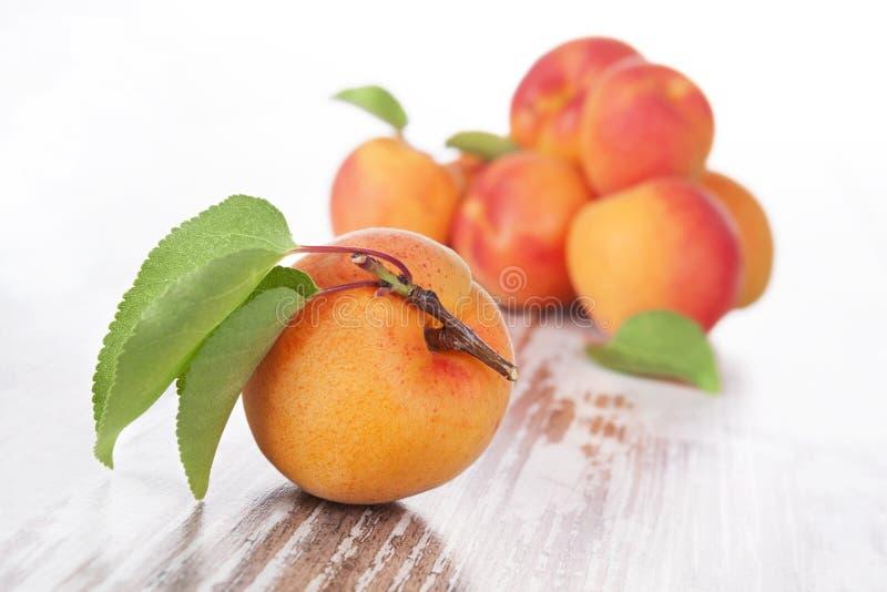 Albicocche mature deliziose. fotografie stock libere da diritti