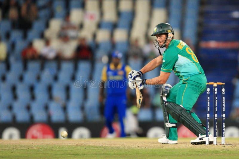 Albie Morkel South African Batsman foto de archivo libre de regalías
