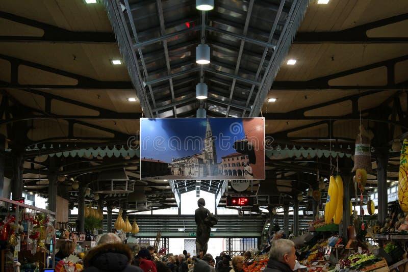 Albinelli历史市场,摩德纳,意大利 图库摄影