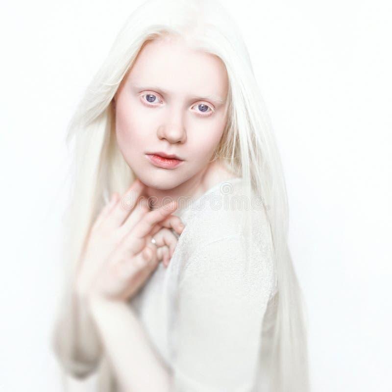 Albino γυναίκα με το άσπρο καθαρό δέρμα και την άσπρη τρίχα Πρόσωπο φωτογραφιών σε ένα ελαφρύ υπόβαθρο Πορτρέτο του κεφαλιού Ξανθ στοκ φωτογραφία με δικαίωμα ελεύθερης χρήσης