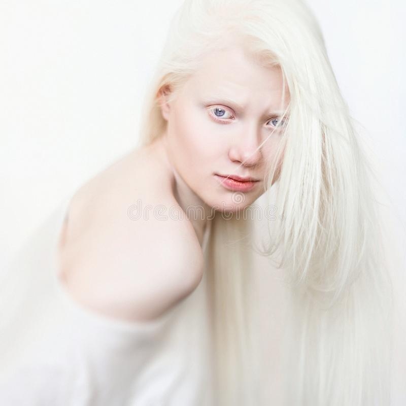 Albino female with white pure skin and white hair. Photo face on a light background. Portrait of the head. Blonde girl stock images