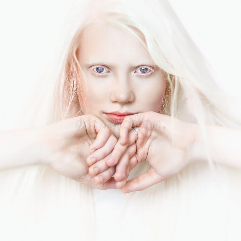 Albinomeisje met witte zuivere huid, blauwe ogen en wit haar Fotogezicht op een lichte achtergrond Portret van het hoofd Het Meis stock afbeelding