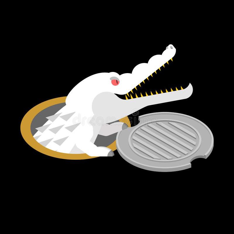 Albinosa aligator w manhole pokrywie Krokodyla Biały potwór w se royalty ilustracja
