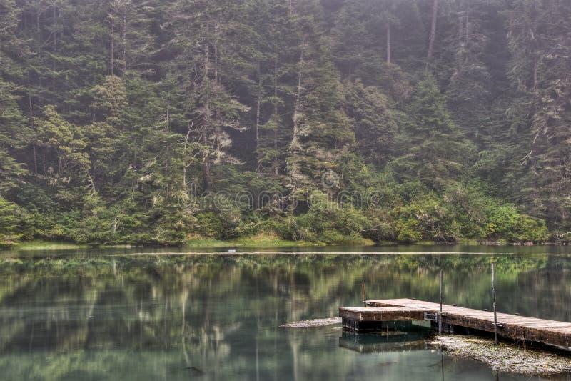 Albion Fluss-Dock lizenzfreies stockfoto