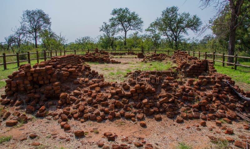 Albisinien fördärvar nära Hazyview i Sydafrika royaltyfri bild