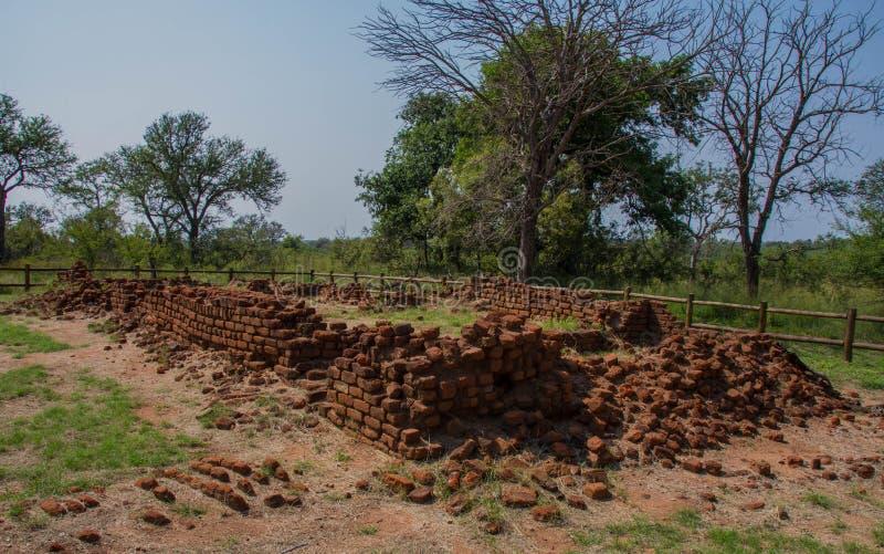Albisinien fördärvar nära Hazyview i Sydafrika royaltyfri foto