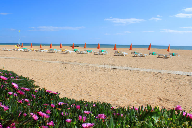 Albufeira Beach With Flowers And Chairs Stock Images