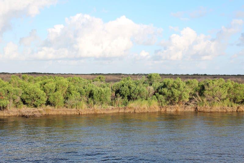 Albufeira Lafourche, Louisiana imagens de stock
