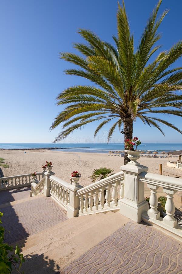 Alcance à praia de Benicassim com a palmeira e as escadas verticais imagens de stock