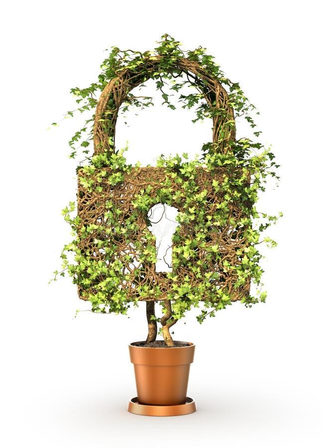 Alcance o conceito A planta verde no formulário do cadeado ilustração do vetor