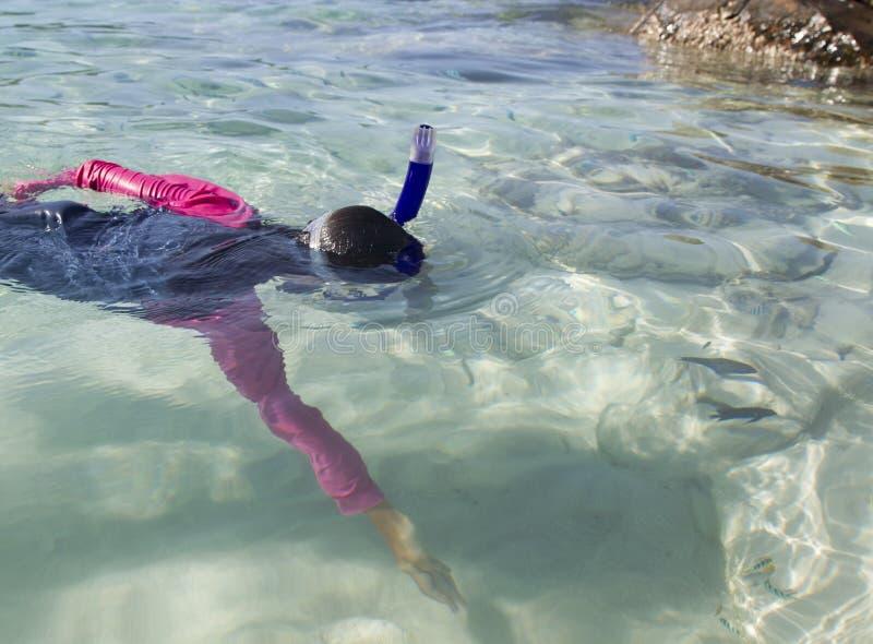 Alcances asiáticos da menina para peixes ao mergulhar imagens de stock