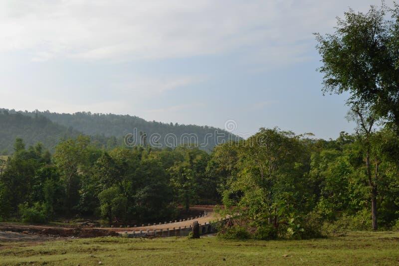 Alcantarilla, árboles verdes, cielo y nubes en la India fotografía de archivo
