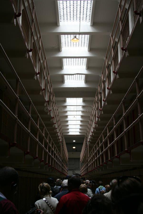 Alcatraz lizenzfreie stockbilder
