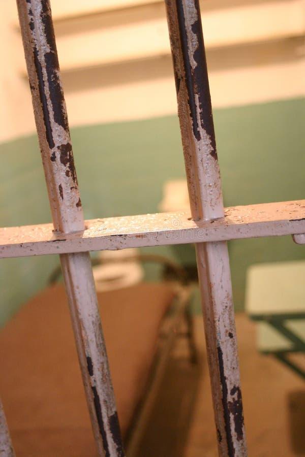 alcatraz 免版税图库摄影