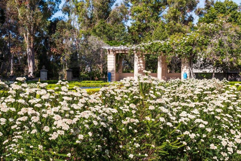 Alcazar ogród w balboa parku obrazy stock
