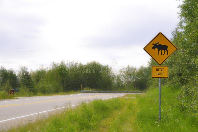 Alces de advertência do sinal de estrada imagens de stock royalty free