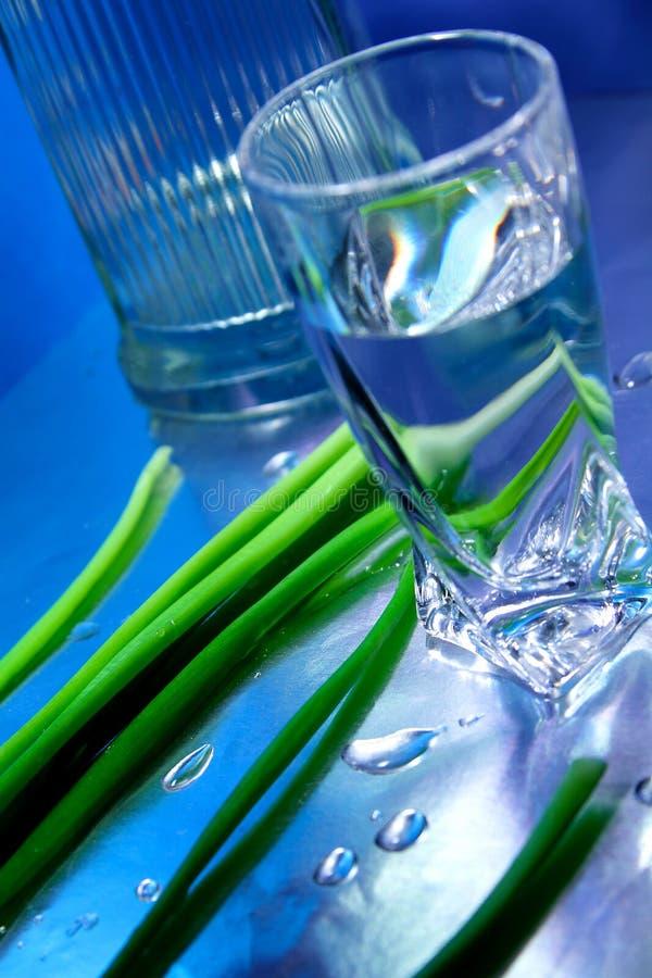 Alcohol_2 fotos de stock