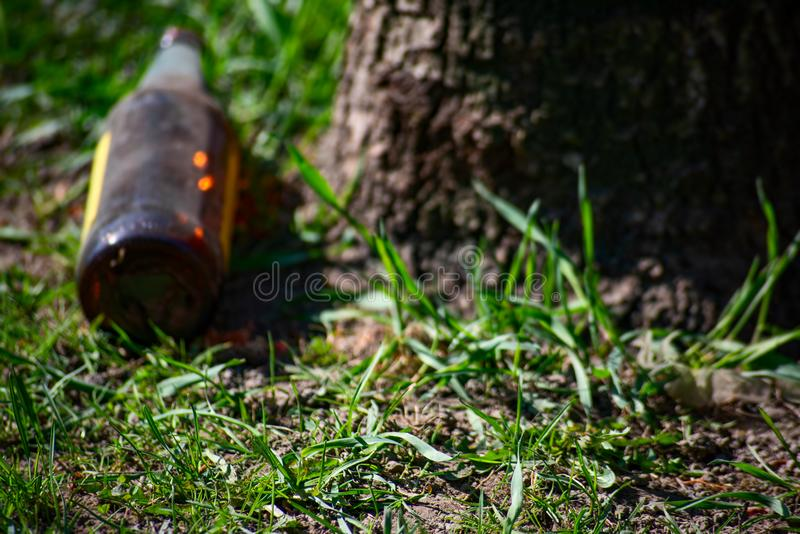 Alcohol glass bottle lying under a tree. Alcohol bottle lying under a tree, glass, beverage, addiction, alcoholic, abuse, alcoholism, dependence, drink, beer royalty free stock photos