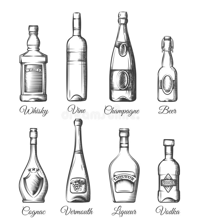Alcohol bottles in hand drawn style stock illustration