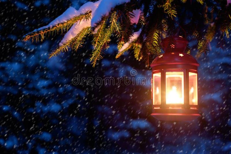 Alcohol de la Navidad en el árbol de navidad del bosque de la noche en la nieve foto de archivo libre de regalías