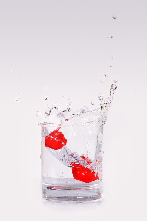 Alcohol splashing stock photography