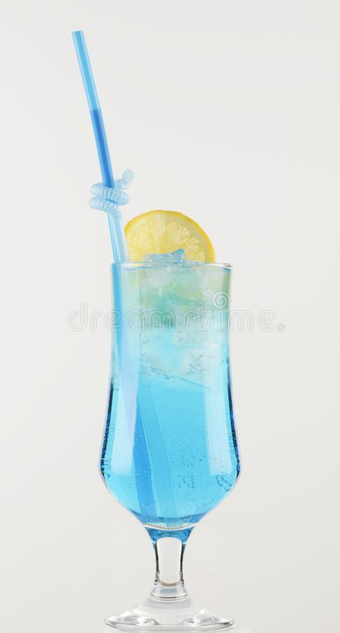 Alcoholic drinks with pieces of fruit royalty free stock images