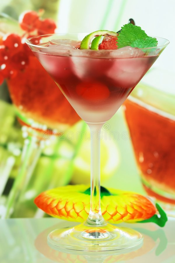 Download Alcoholic Summer Recreational Drink Stock Photo - Image: 5108514