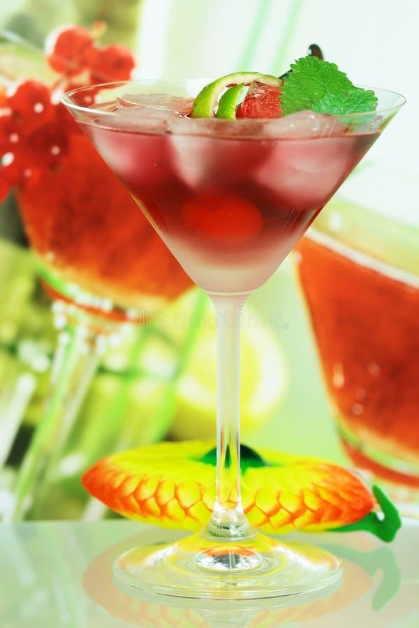 Alcoholische de zomer recreatieve drank stock afbeeldingen
