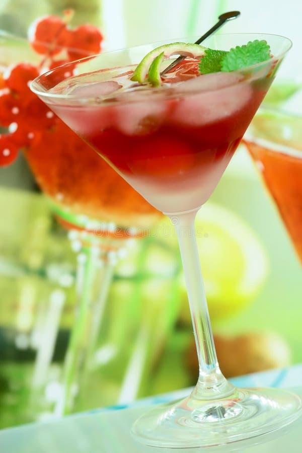 Alcoholische de zomer recreatieve drank royalty-vrije stock foto