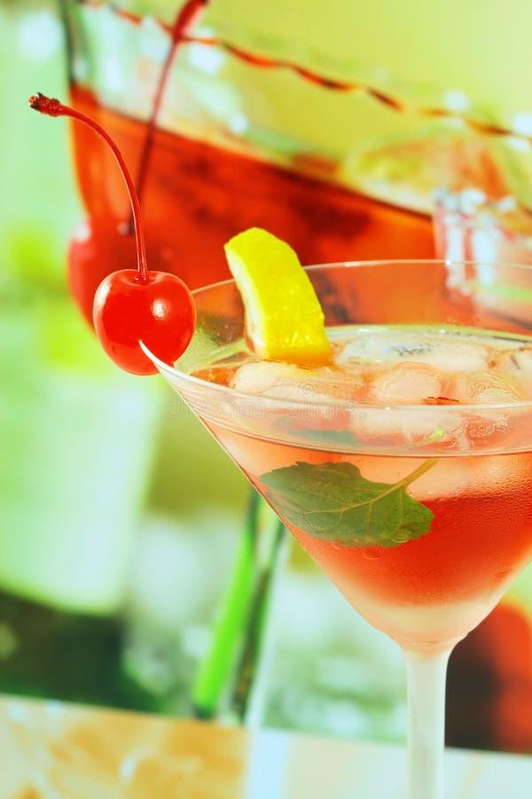 Alcoholische de zomer recreatieve drank - ondiepe DOF royalty-vrije stock foto's
