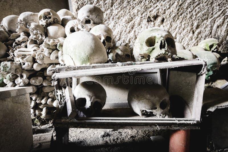 Alcuni crani accatastati nel cimitero della fontanella fotografia stock libera da diritti
