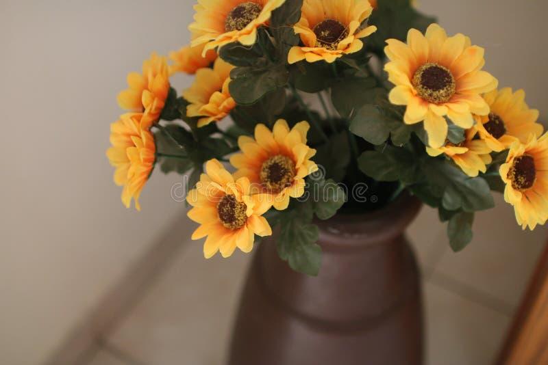 Alcuni fiori gialli in un vaso fotografie stock
