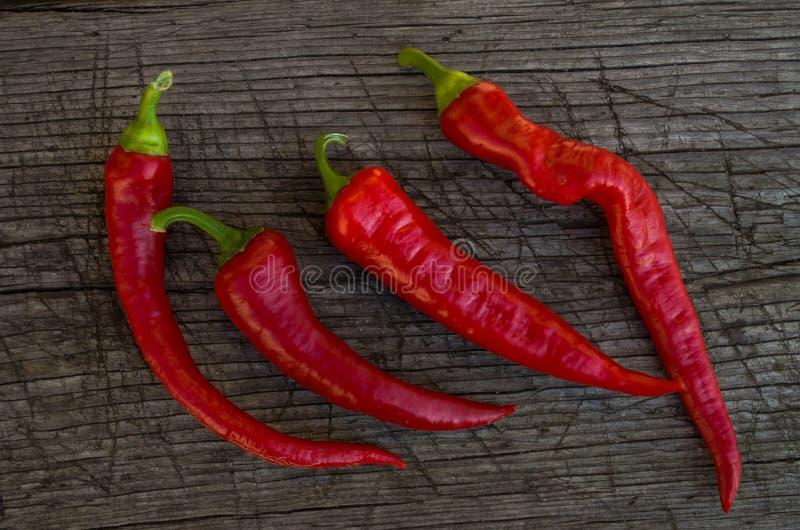 Alcuni peperoni roventi fotografia stock libera da diritti