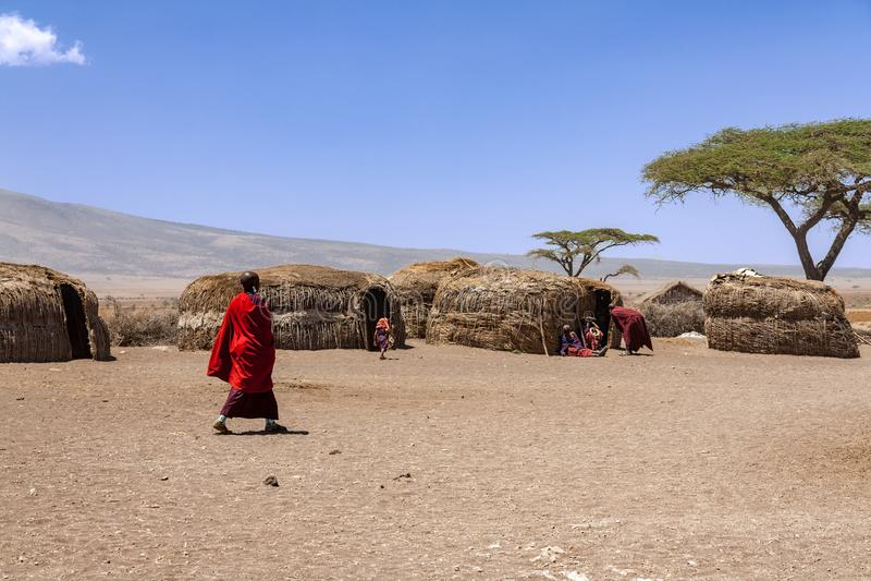 Aldeões de Massai com seu dia a dia dentro de uma vila de Massai fotos de stock