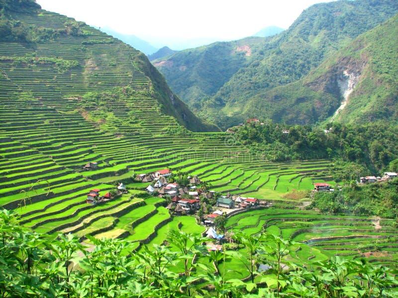 Aldea de las terrazas del arroz de Batad fotografía de archivo libre de regalías