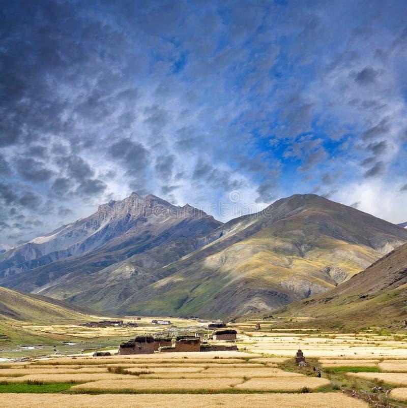 Aldea en Dolpo, Nepal de Dho Tarap fotografía de archivo
