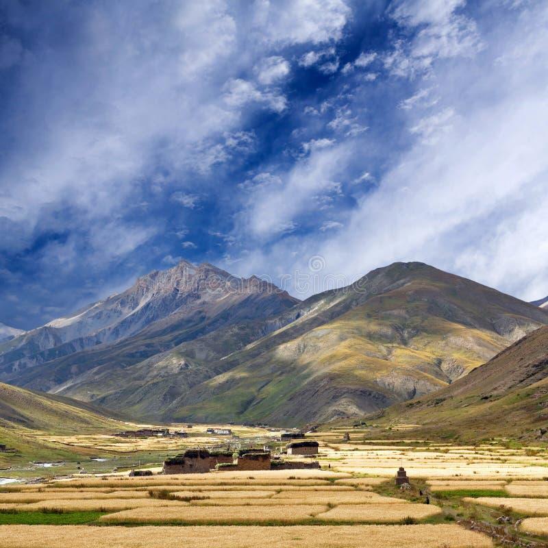 Aldea en Dolpo, Nepal de Dho Tarap foto de archivo libre de regalías