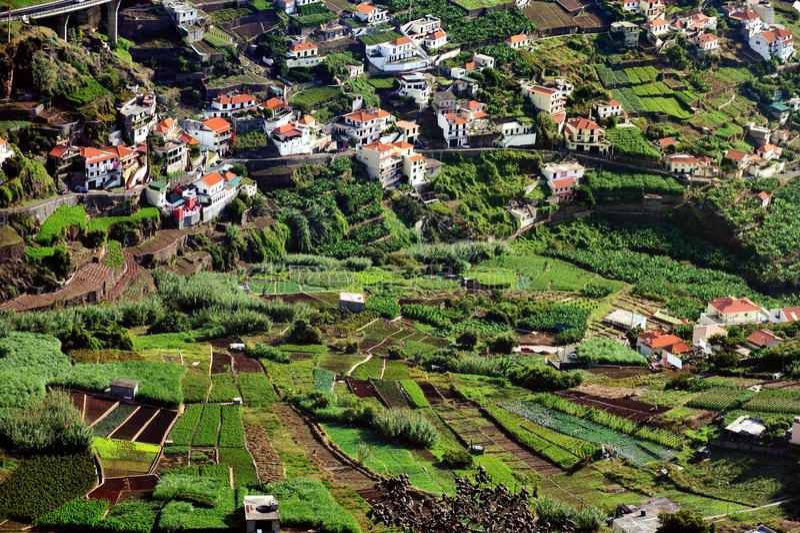 Aldea en la costa sur de la isla de Madeira fotografía de archivo libre de regalías