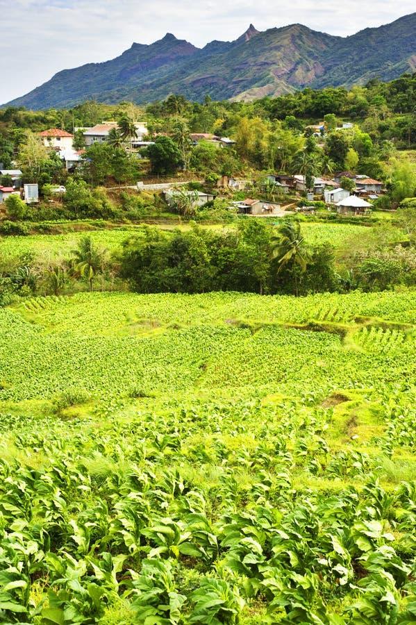 Aldeia da montanha de Filipinas fotografia de stock