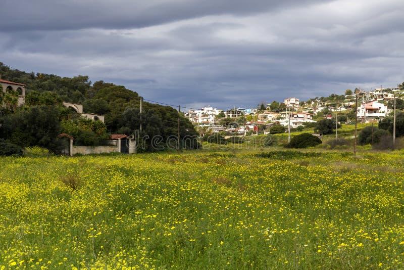 Aldeia da montanha e prado de florescência no dayGreece nublado, salames da ilha fotos de stock