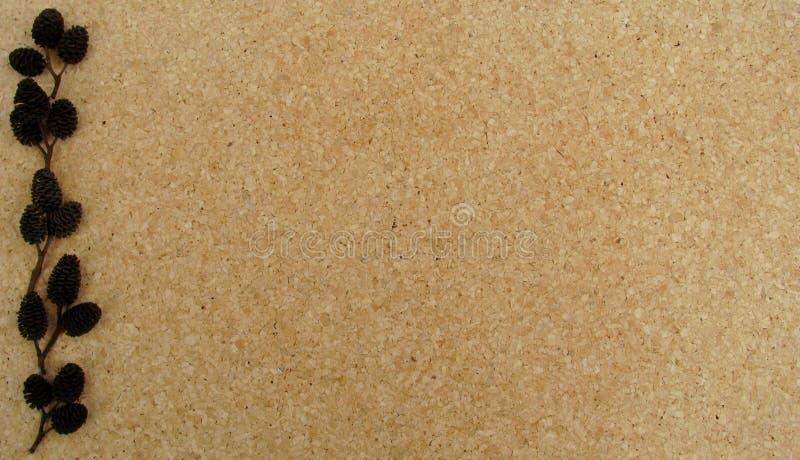 Alder cone decorated brown cork board. Background stock photos