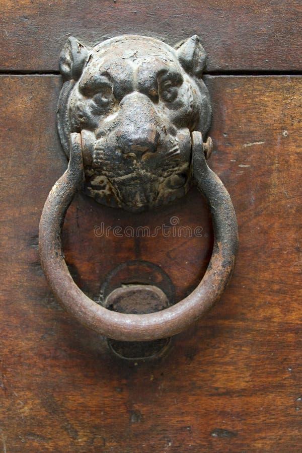 Aldrava de porta antiga de Jaguar na porta de madeira imagens de stock