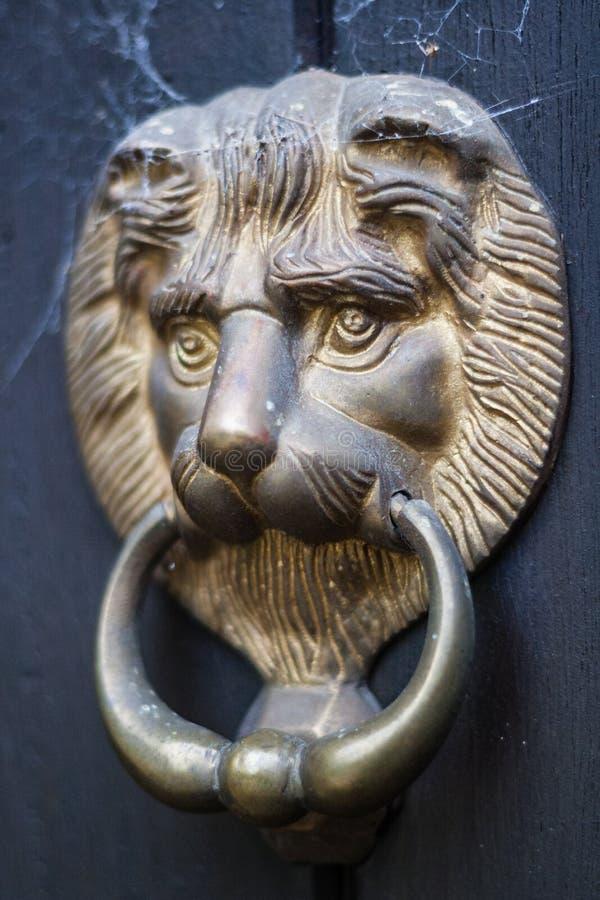 Aldrava de porta principal do leão com teias de aranha foto de stock royalty free